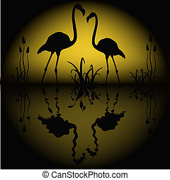 Reflection of two flamingos