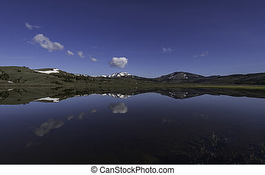 Reflection of water in the lake