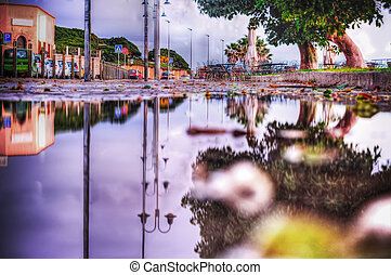 reflection on a puddle in hdr