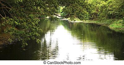 Reflection on lake.