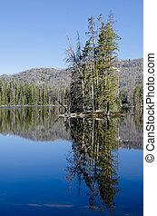 Sylvan Lake, Yellowstone National Park, Wyoming, USA