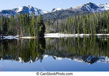 Reflection on Sylvan Lake, Yellowstone National Park, Wyoming, USA