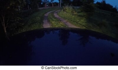 reflection on the hood of the car while driving