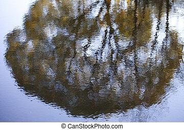 Reflection.