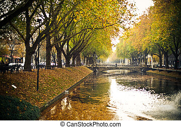 Reflections and fallen leaves in canal water