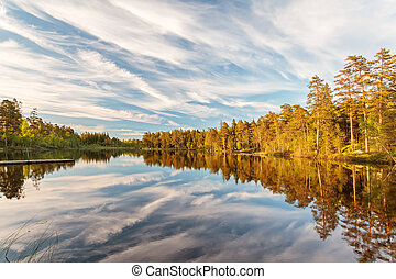 Reflections in a lake in Smaland, Sweden
