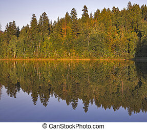 Reflections of autumn.