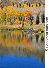 Reflections of Autumn Pond