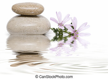 Still life about zen balance with stones, flowers and water.