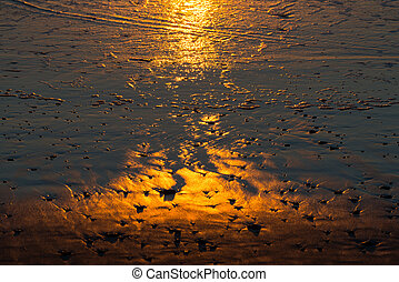 Reflections on the beach at sunset