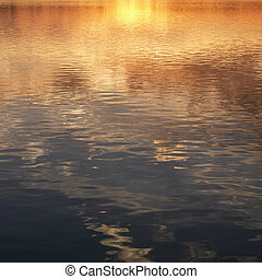 Reflections on water.