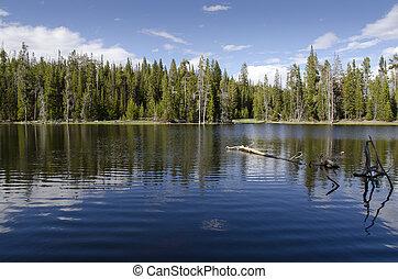 Yellowstone Lake - reflections on Yellowstone Lake in ...