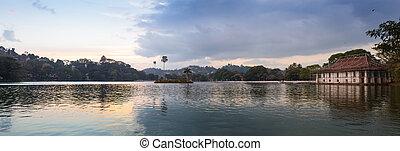 reflet, arbre, lac, pin, pang, ung