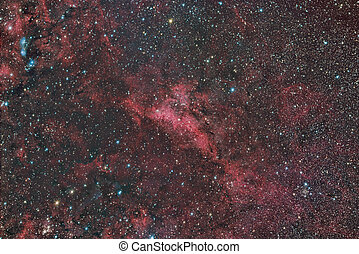 reflet, cygnus, nébuleuse, émission, 251, constellation, lbn