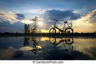 reflet, de, silhouette, parc bicyclette, sur, les, front mer