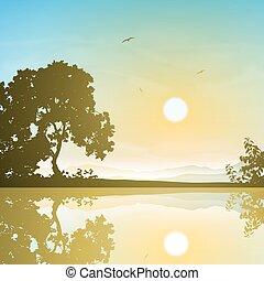 reflet, paysage
