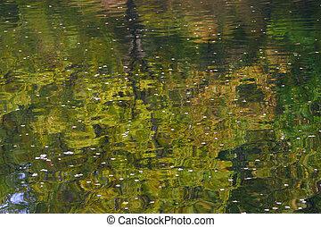 Reflexion of autumn in water