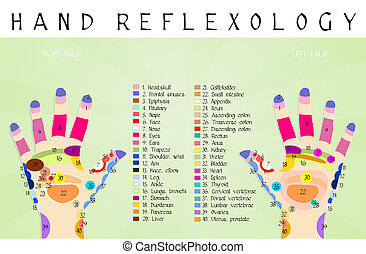 reflexology, チャート, 手