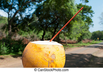 Refresh drink in hot tropical climate - Coconut juice as a ...