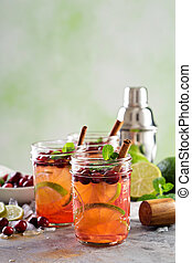 Refreshing winter cocktail with lime and cranberry