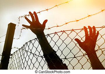 refugiado, homens, cerca