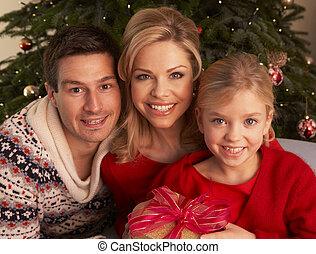 regali, casa, natale, famiglia, apertura