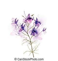 regalis - Inflorescence larkspur by watercolor Elements