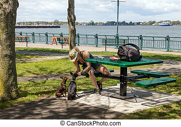 Regard sur le fleuve park sunny afternoon at springtime ...