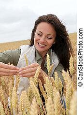 regarder, agronomist, femme, blé, oreilles