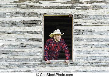 regarder, fenêtre, cow-boy, dehors