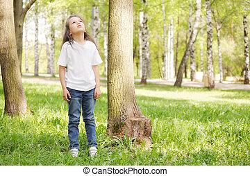 regarder, girl, arbre, haut