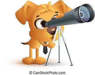 regarder, prof, chien, télescope, par