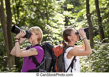 regarder, randonnée, deux, jumelles, forêt, femmes