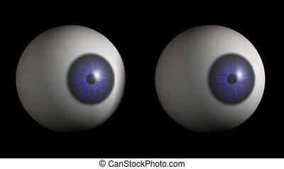 regarder, side., globes oculaires, hd, cg.
