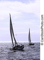 regatta transquadra
