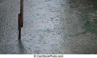 regen, hd