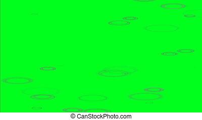 regen, pfütze, ringe, auf, grün, schirm