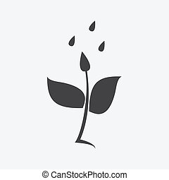 regen, pflanze, ikone