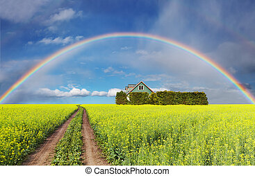regenbogen, aus, feld