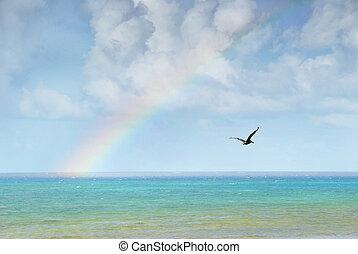 regenbogen, aus, karibisch