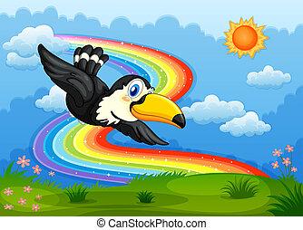 regenbogen, himmelsgewölbe, vogel