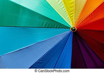 regenbogen, schirm, bunte, lgbt, hintergrund., colors.