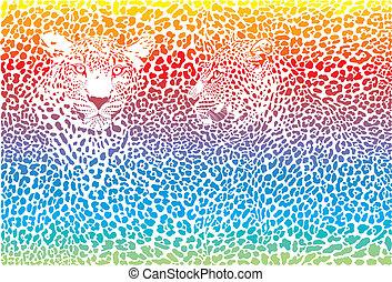 regenboog, luipaard, achtergrondmodel