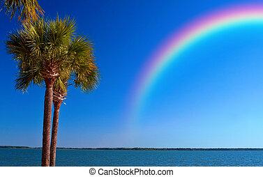 regenboog, oceaan, op