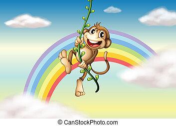 regenboog, plant, wijnstok, aap, hangend