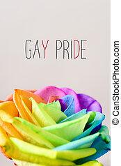 regenboog, roos, en, tekst, vrolijke trots