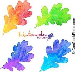 regenboog, set, geverfde, bladeren, eik, watercolor, kleuren