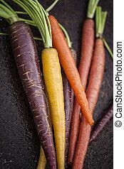 regenboog, wortels, organisch