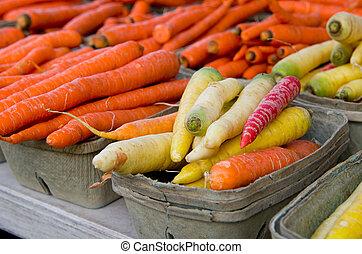 regenboog, wortels