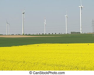 regenerative energy sources - Wind energy and rape,...